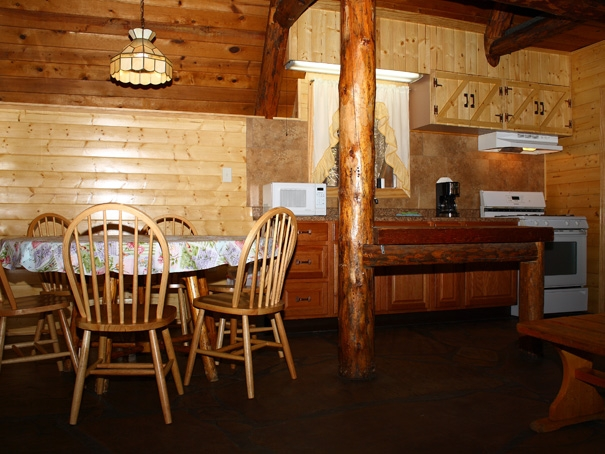 Cabin13-Kitchen
