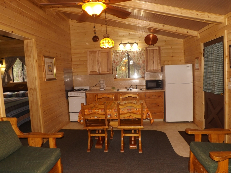 Cabin 5 BEST Kitchen