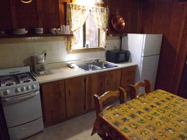 Cabin-5-Kitchen