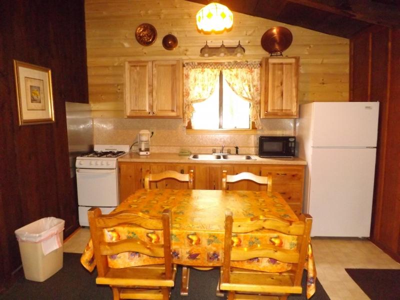 Cabin 5 New Kitchen Closer