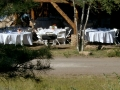 Wedding pictures - outdoor tables