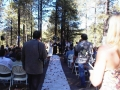 Wedding pictures - the aisle