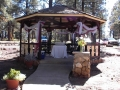 Wedding pictures - toast at the gazebo