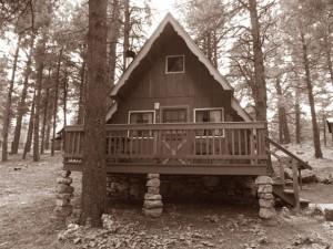 Cabin-09-BW