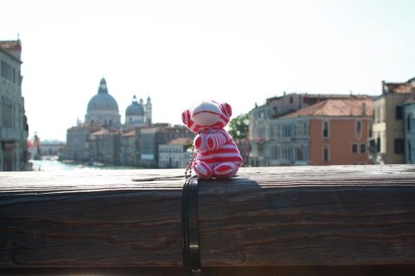 The little travel bug travels from Flagstaff to Venice.
